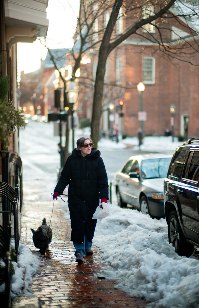 After snow comes springtime in Boston. Leica M 240 with Leica 50mm Noctilux-M ASPH f/0.95