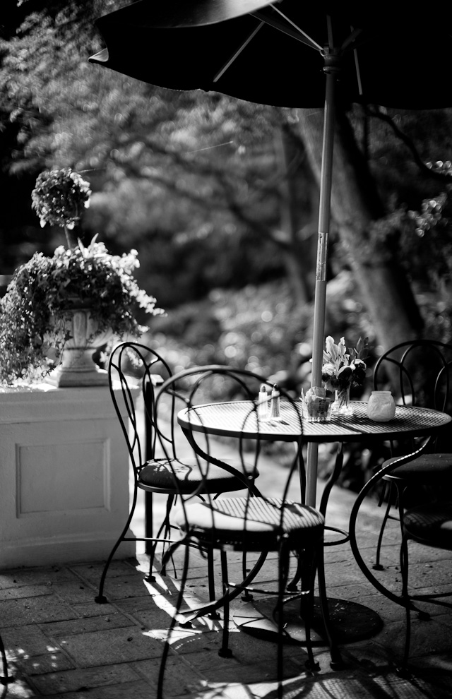 The garden 8AM at The Manor Hotel (Chateau Elysee) in Hollywood. This or the balcony is my office in the morning. Leica M 240 with Leica 50mm Noctilux-M ASPH f/0.95.