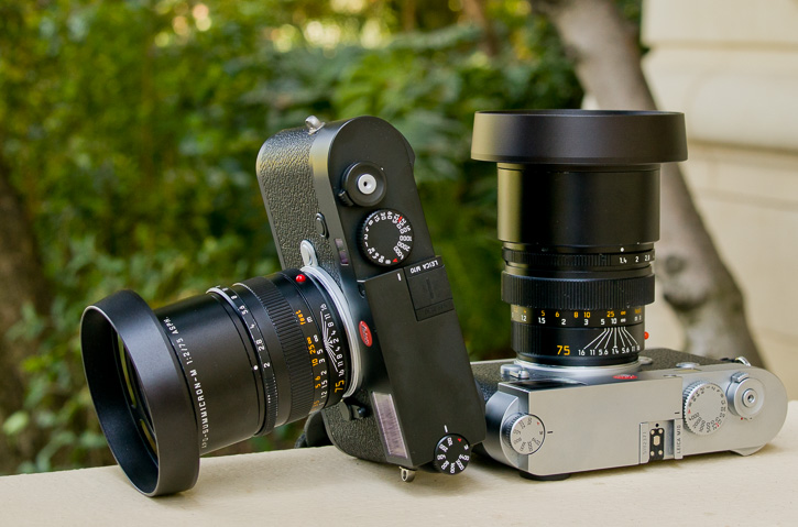The 75mm Summicron with the E49 shade, and the 75mm Summilux with the E60-75 shade.