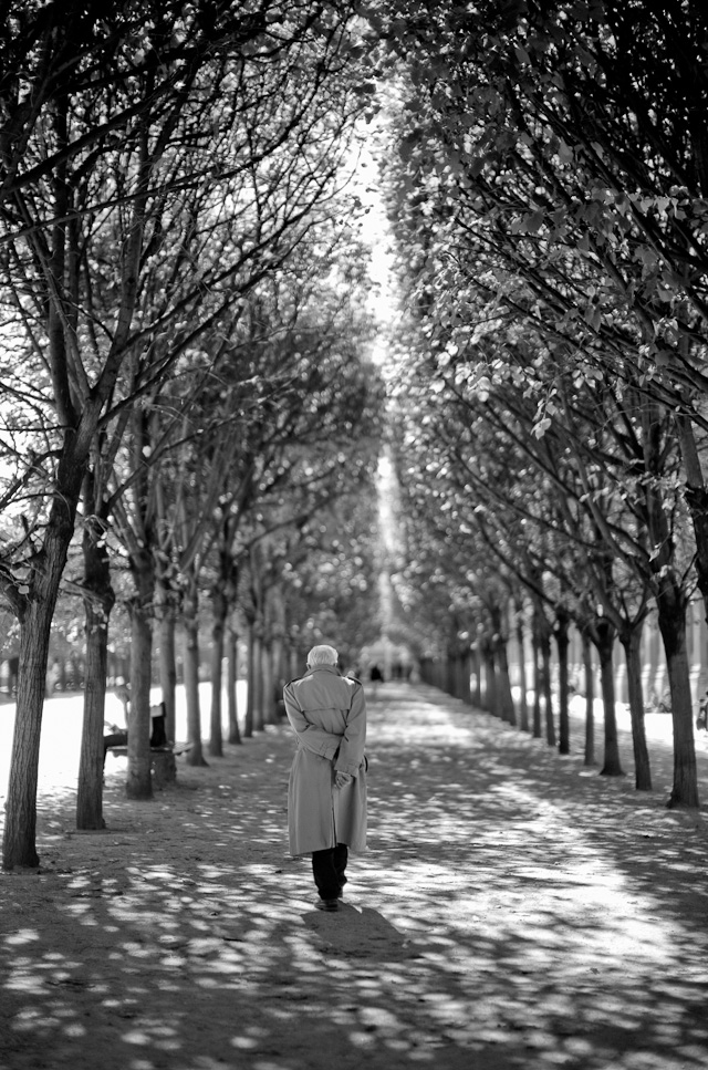 A man in Palais Royal. Leica M 240 with Leica 50mm Noctilux-M ASPH f/0.95.