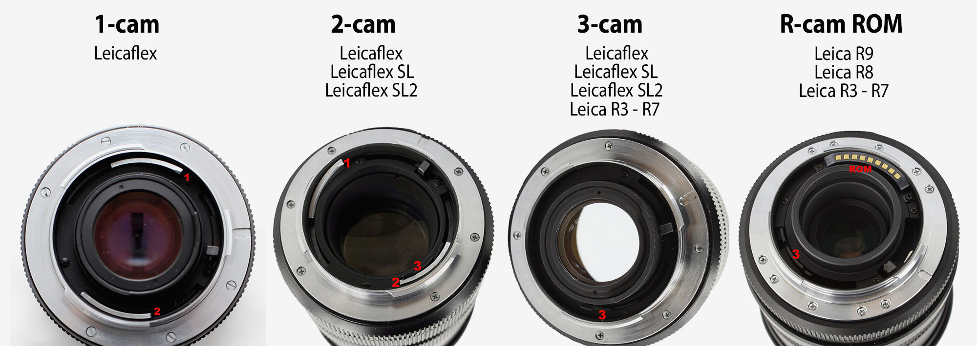 Cam = A Leica transmission system for the Leica R lenses, seen as metal parts inside the lens bayonet. (A cam is a rotating part in machinery, designed to