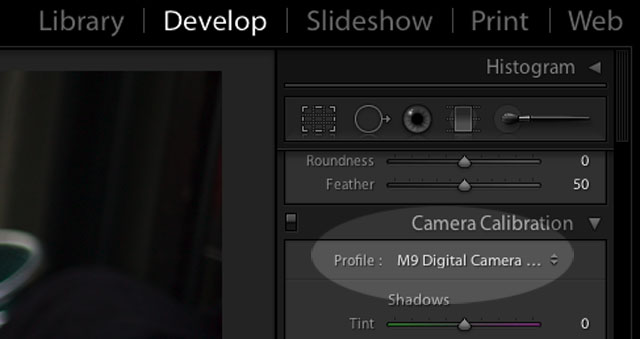 Finding the Camera Profile in Camera Calibration in Lightroom 2